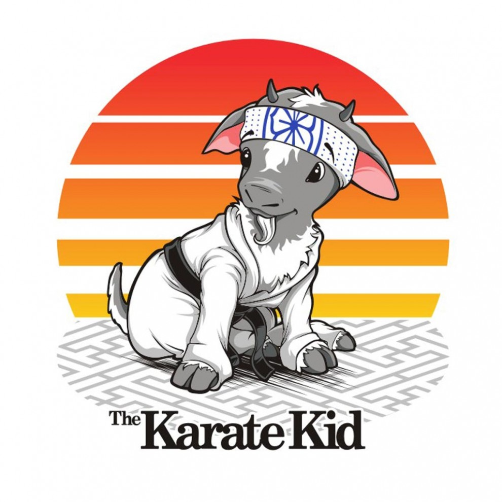 Karate Kid - Vector