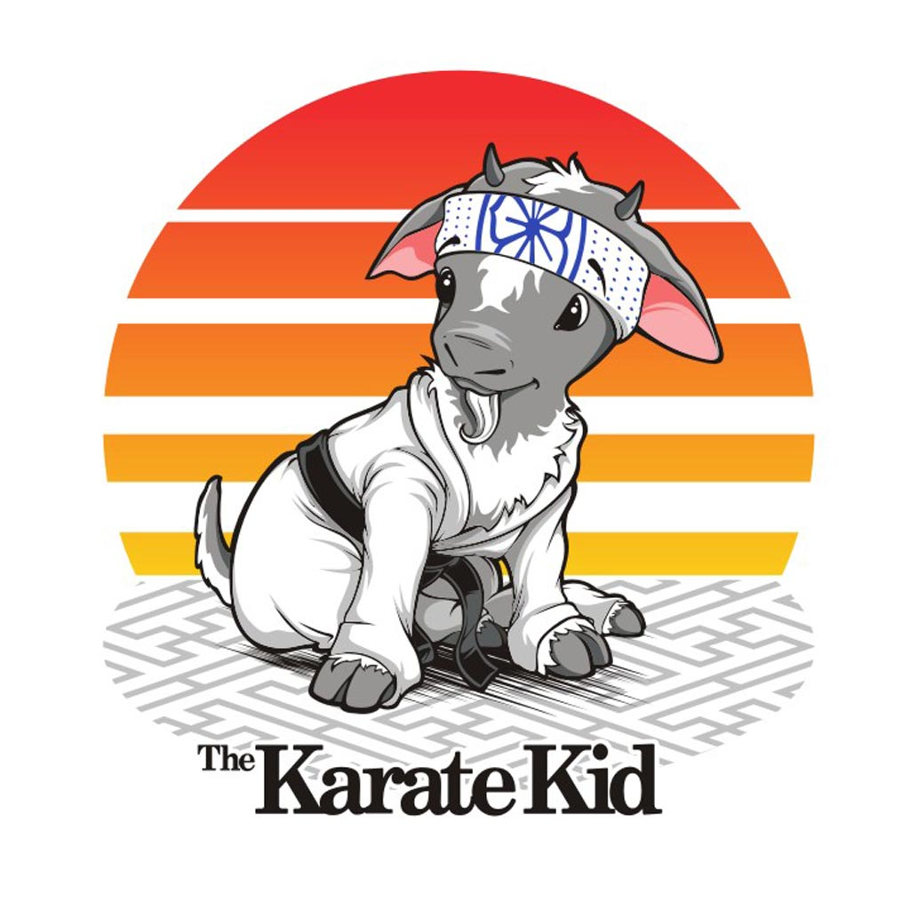 The Karate Kid: A Guide to Monk/Druid Multiclassing | Morrus